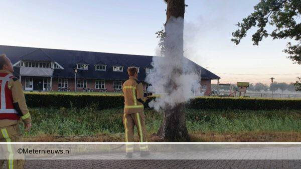 boom in brand assen