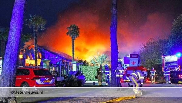 grotebrandbijpalmkwekerij